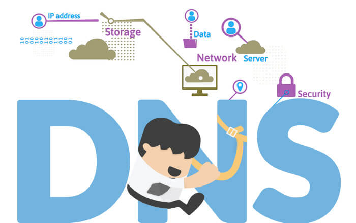 All You Wanted to Know About Domain Name System Protection
